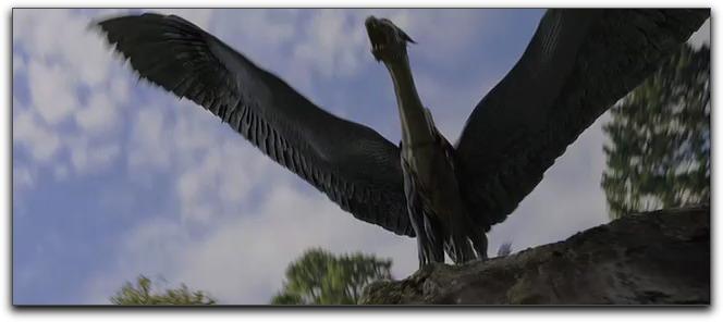 Eragon-Dragon-Flying-Eragon-Dragon-Flying-Eragon-Dragon-Flying